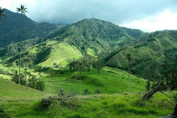 www.exploringcolombia.com
