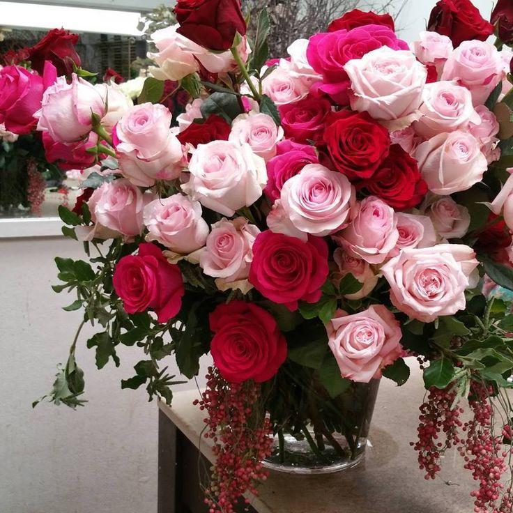 этом доброе утро картинки красивые с розами для природе существуют особи