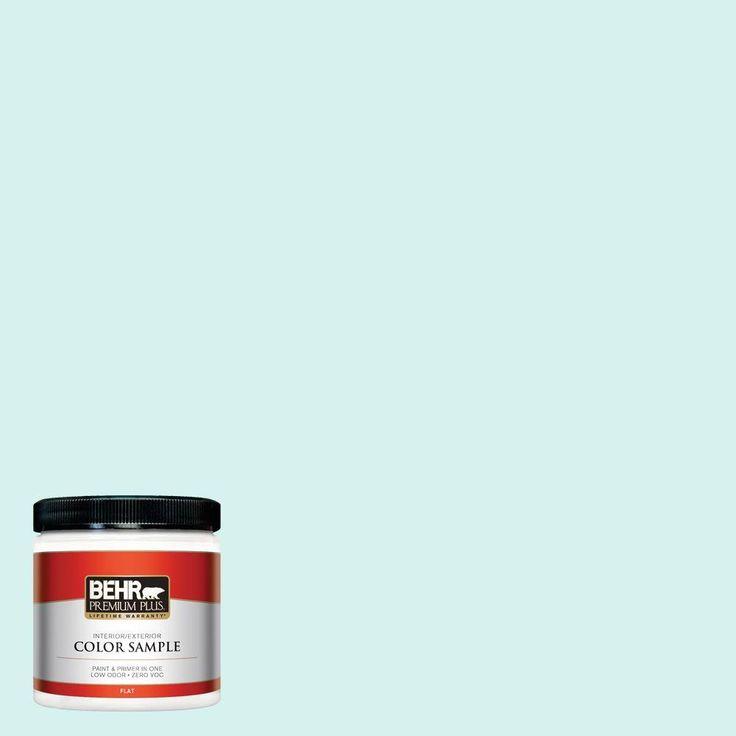 8 oz. #P450-1 Sea Ice Interior/Exterior Paint Sample