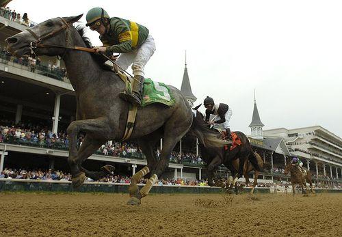 horse races...