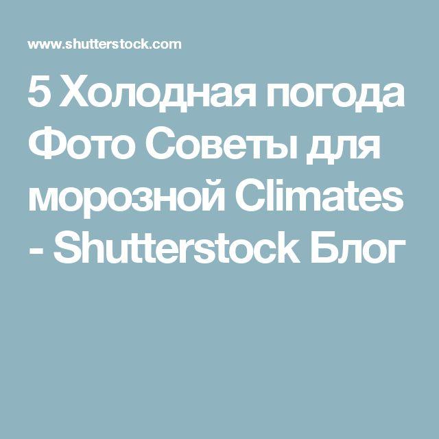 5 Холодная погода Фото Советы для морозной Climates - Shutterstock Блог