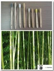 Ecobamboo - ekologiczne szczoteczki do zębów