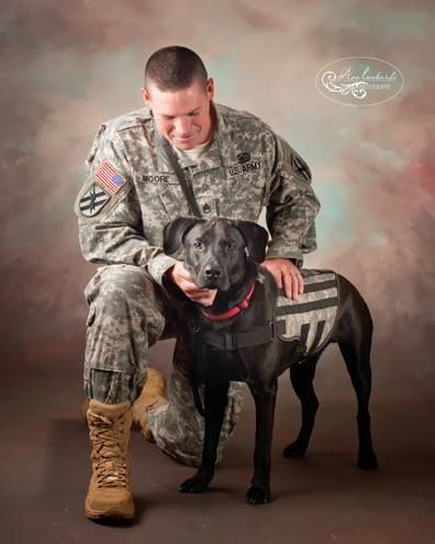 K9s For Warriors graduate team, David and Wilco. After battle, and after rescue shelter. This is what recovery looks like.