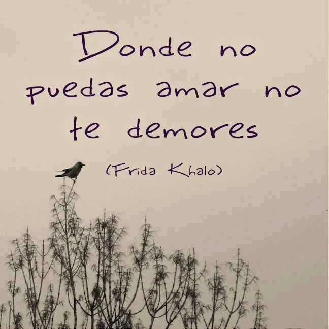 """""""Donde no puedas amar no te demores."""" -Frida Khalo"""