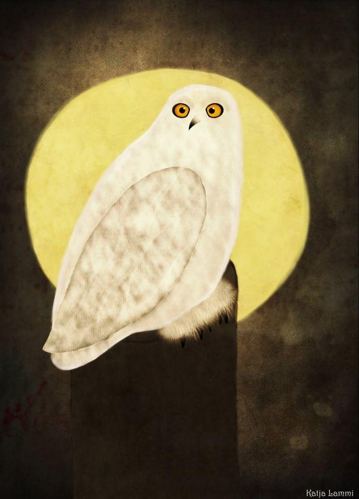 Owl by KatjaLammi
