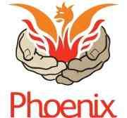 Phoenix Fun Palace  The Phoenix Fun Palace will be created and led by young people living in South Lewisham. In preparation for the main event we will be testing some ideas and getting creative during our Summer Fun programme. This will include: making processional art works and writing slogans; constructing, decorating and flying kites; designing and building items for the public realm including bird boxes, bug houses and signage; learning about edible plants, nutrition, flavours, tastes…