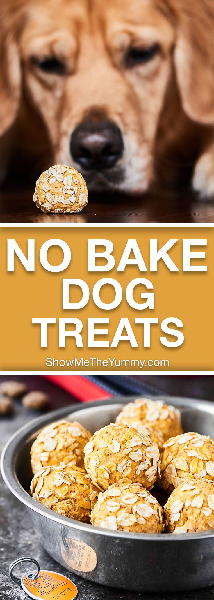 These Homemade Dog Treats are full of organic ingredients like pumpkin, peanut butter, bacon, applesauce, yogurt and require NO baking! Your fur baby will surely go nuts for these healthy, homemade treats! showmetheyummy.com #dogtreats #dogfood