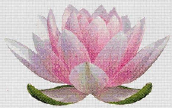 cross stitch lotus