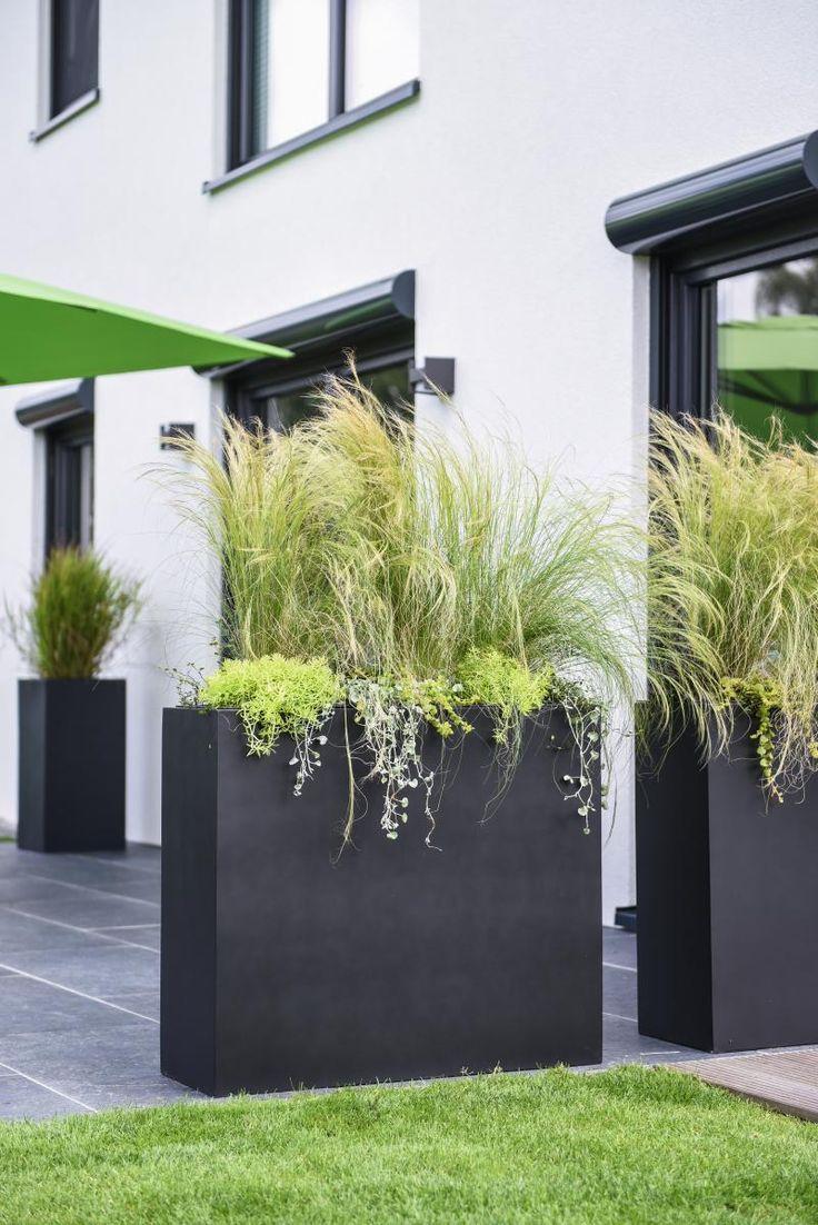 Pflanzkübel als Sichtschutz auf Terrasse Backyard