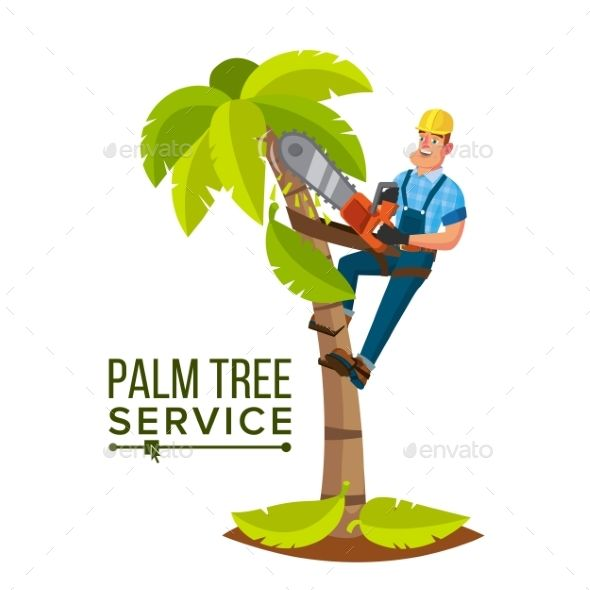 Palm Tree Trimming Vector. Trimming Tree Or Removal To Tree Pruning. Cartoon Cha…