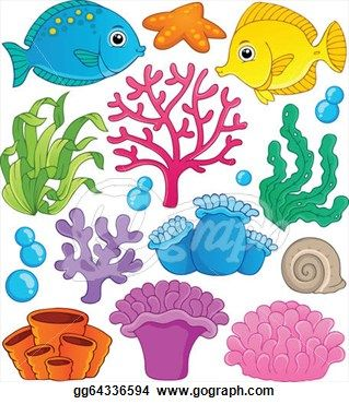 coral reef clipart - Google Search