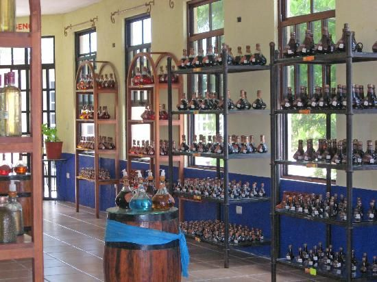 Tequilla Factory in Cozumel Mexico.... yum... almond tequilla.