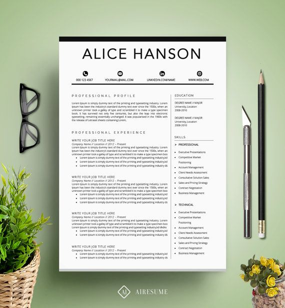Resume Booklet Template     Creative Infographic Resume Templates