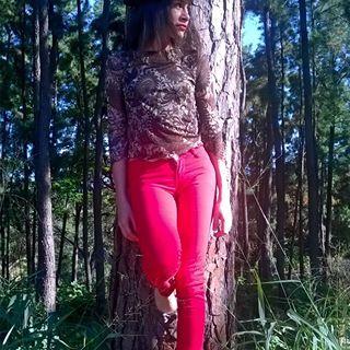 #foto #arboles #pinos #portuguesa #megusta #like #photography #venezuela #photo