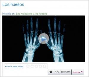 Más de mil videos de Ciencias con Santillana