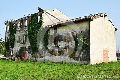 An isolated decaying house full of plants in the field in north Italy, vintage image.