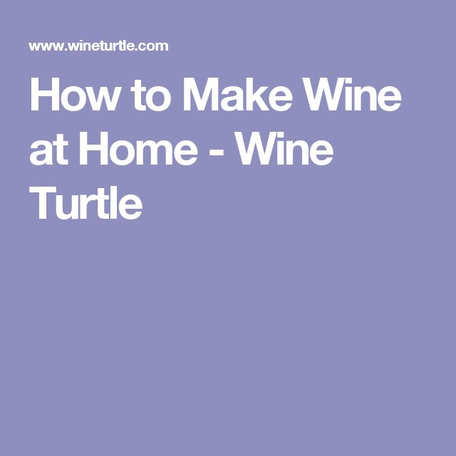How to Make Wine at Home - Wine Turtle