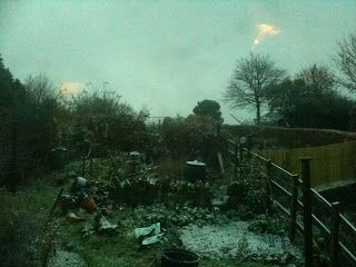Snow and chilli jam