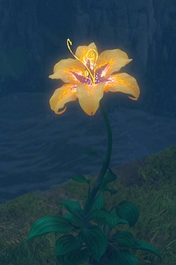 ʘnce upon a time, a single drop of sunlight fell from the heavens and from this small drop of sun, grew a magic, golden flower...