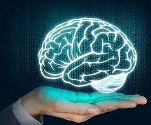 Мозг уничтожает человека с помощью вредного сахара - health info