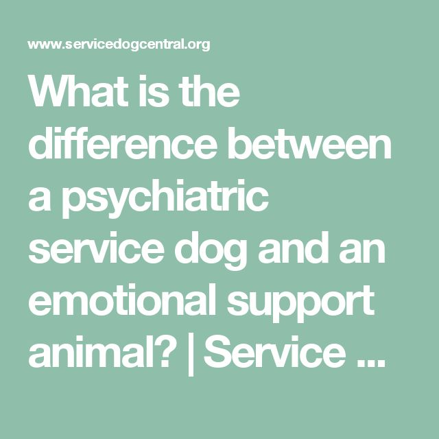 Psychiatric Service Dog Services