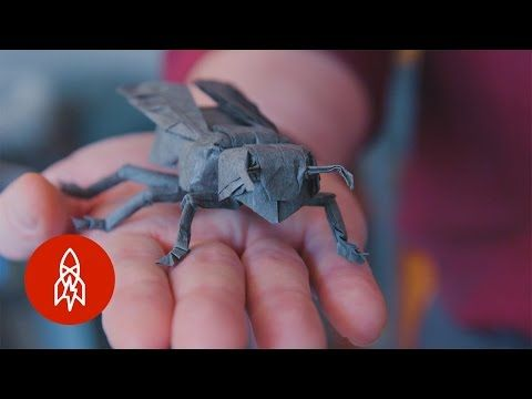 A Fold Apart: Origamist Robert Lang's Incredible Paper Creations - YouTube