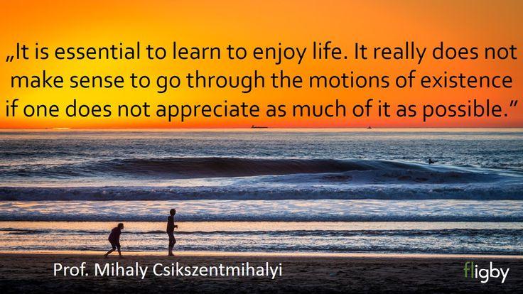Enjoying Life by Mihaly Csikszentmihalyi