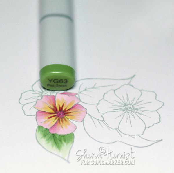 Flowers & Feather Blending - copic tutorial - bjl