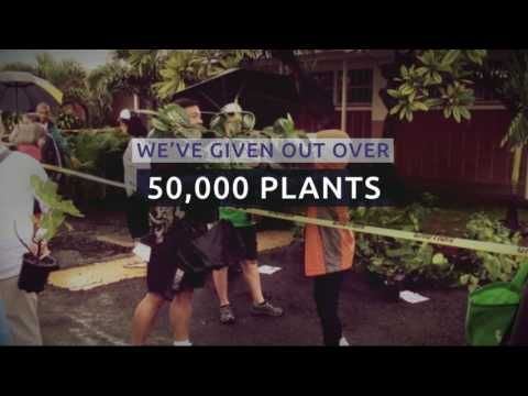 Every year, Hawaiian Electric, Maui Electric, and Hawaii Electric Light celebrate Arbor Day by helping to give away thousands of plants on their respective islands. Visit ArborDayHawaii.org to learn more about the events occurring in November.
