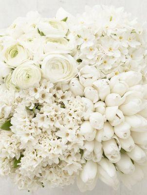 Love All White Flowers