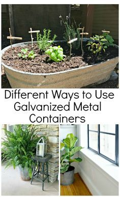 Galvanized metal is a hot trend right now. Check out how you can easily use galvanized metal containers, buckets and decor around your house.