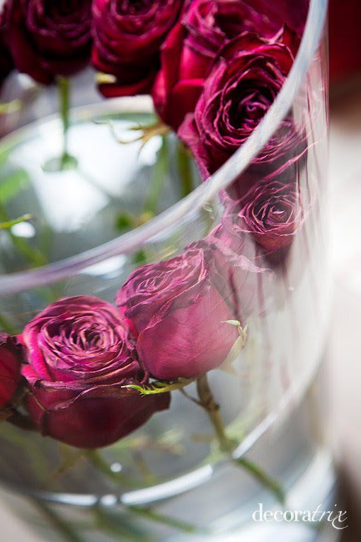 Jarrones de cristal con flores sumergidas: rosas