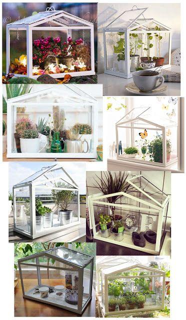M s de 20 ideas incre bles sobre mini invernadero en - Invernadero casero terraza ...