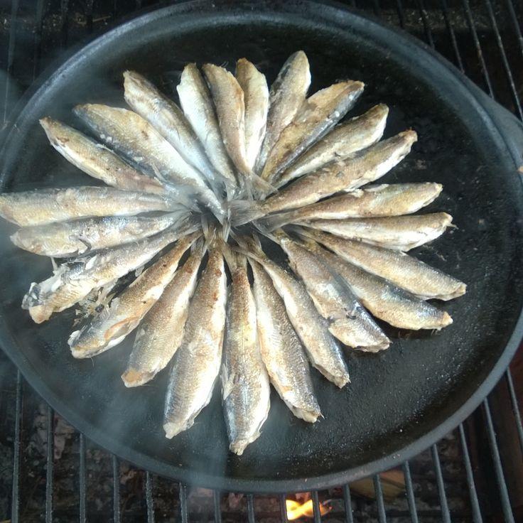 # kalat #muikku #syksy #Puruvesi #järvi #Punkaharju #Suomi #houseforsale #Finland #lake #fish