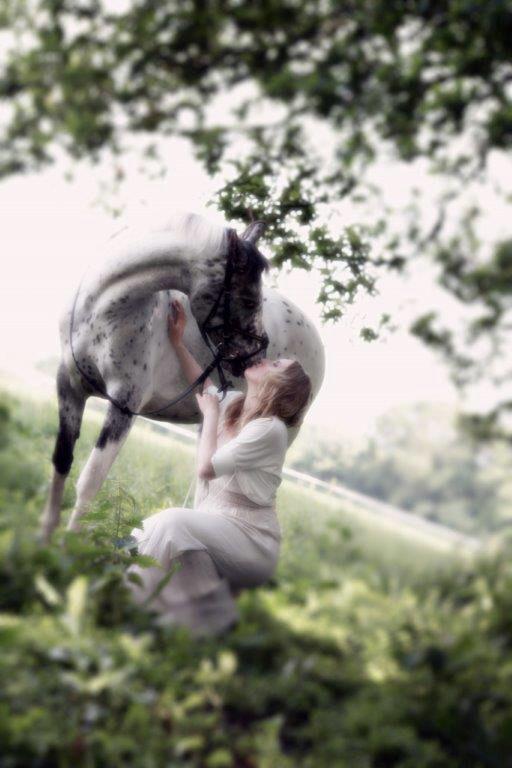Horse romance