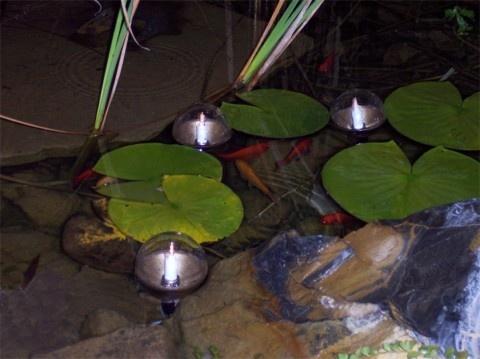 koi pond lighting ideas. beautiful pond more floating pond lights for koi pond lighting ideas r