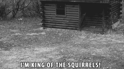 "Haha my sisters nickname for me is ""Squirrel"" because of my ADD XD. IM KING OF THE SQUIRRELS!!!! YouTube lol"