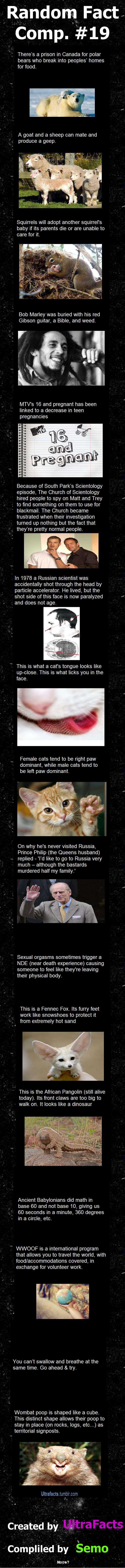 Random Fact Comp. 19  // funny pictures - funny photos - funny images - funny pics - funny quotes - #lol #humor #funnypictures