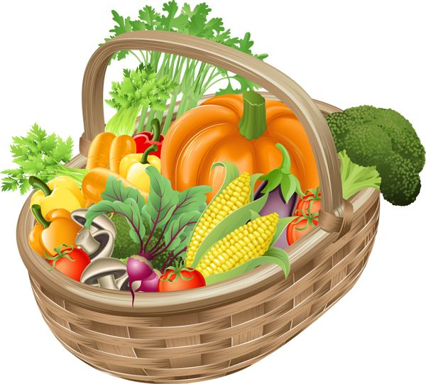 Basket Of Vegetables Clipart : Best images about fruit and vegetables clip art on