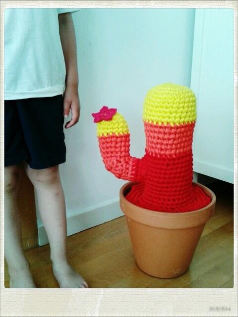Cactus de trapillo XXL