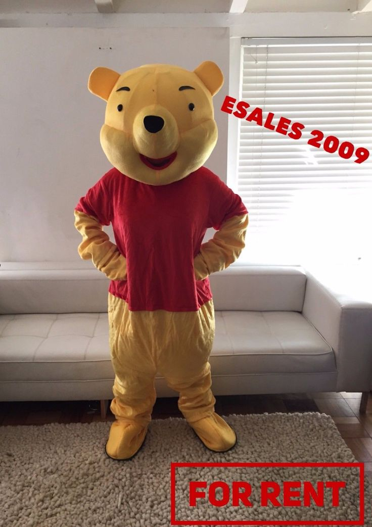 Bear Costume Rental