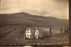 ANZAC Graveyard at Lemnos (thompsoe) Tags: cemetery graveyard wwi worldwari worldwarone ww1 1915 nurses worldwar1 australiansoldiers