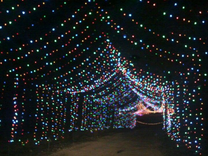 Austin Christmas Tree Part - 31: Santau0027s Ranch In New Braunfels, TX - Https://www.realtyaustin.