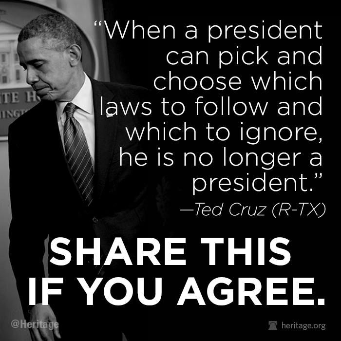 Ted Cruz: Obama's lawlessness is 'dangerous and terrifying'...Obama is a loose fucking cannon!!! ..j