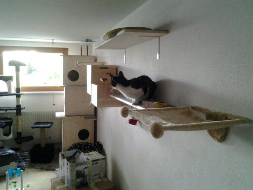 ber ideen zu katzen spielplatz auf pinterest katzenzimmer kratzb ume und katzenm bel. Black Bedroom Furniture Sets. Home Design Ideas
