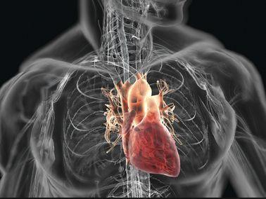 Curcumin More Beneficial Than Aspirin For Heart Disease Prevention