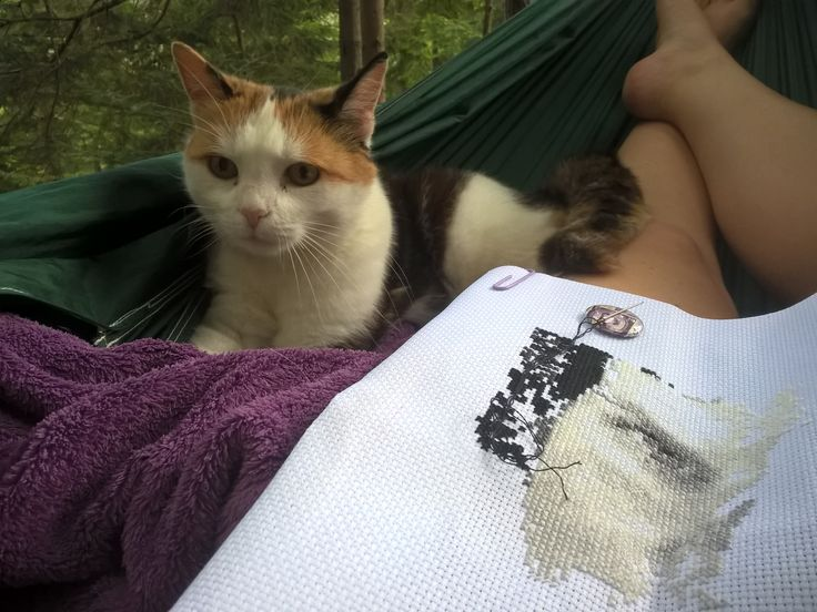 Sticken in der Hängematte... mit Begleitung. Stitching in the hammock... with stitching buddy