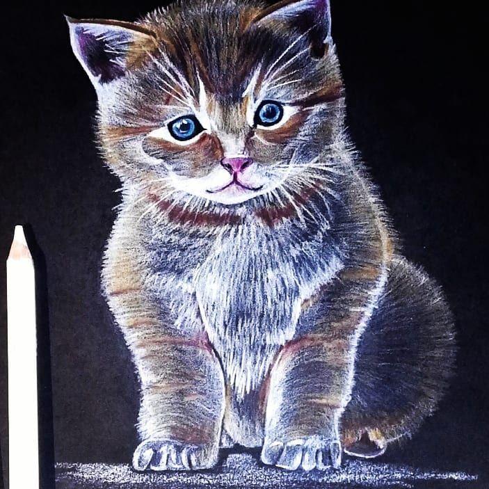 Imadjuk A Cicakat Kezzel Rajzolt Kiscicas Mintank Is Kerheto Barmelyik Termekunkre Cica Kat Mug Tshirt Sttr Mugs Parna Ajandek Macska Animals Cats