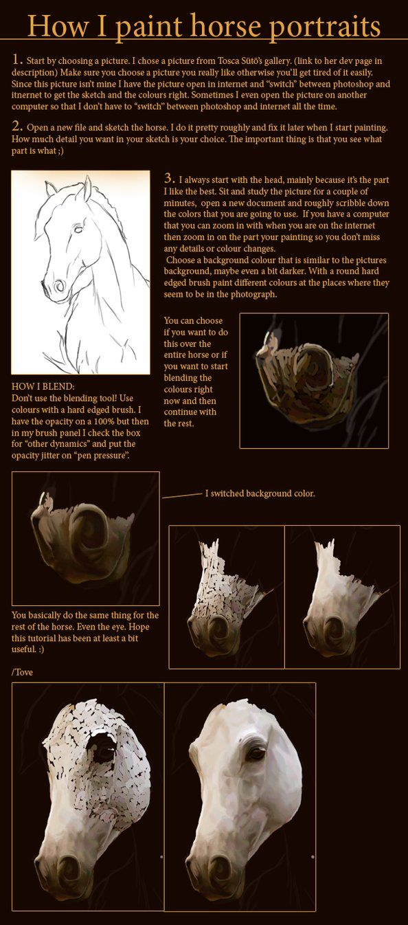 How To Draw Horses 17 Best Images About Drawing Eyes, Nose, Lips And Faces