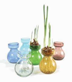 17 Best Images About Glass Vases On Pinterest Count